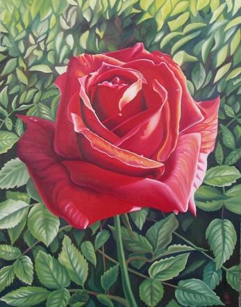 Ashkelon Rose